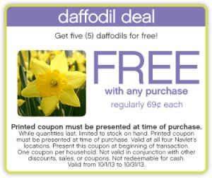 daffodil-deal