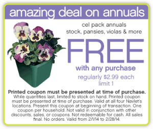 amazing-deal-on-annuals