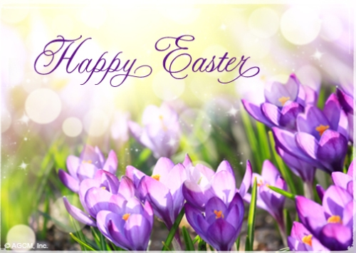 Happy easter everyone diablo reporter just wanted to start off this lovely sunday by wishing everyone a very happy easter i hope you all have a beautiful day with your families and friends m4hsunfo